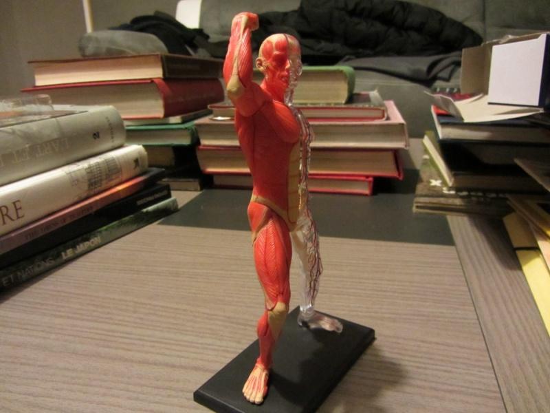Figurines de référence Img_0714