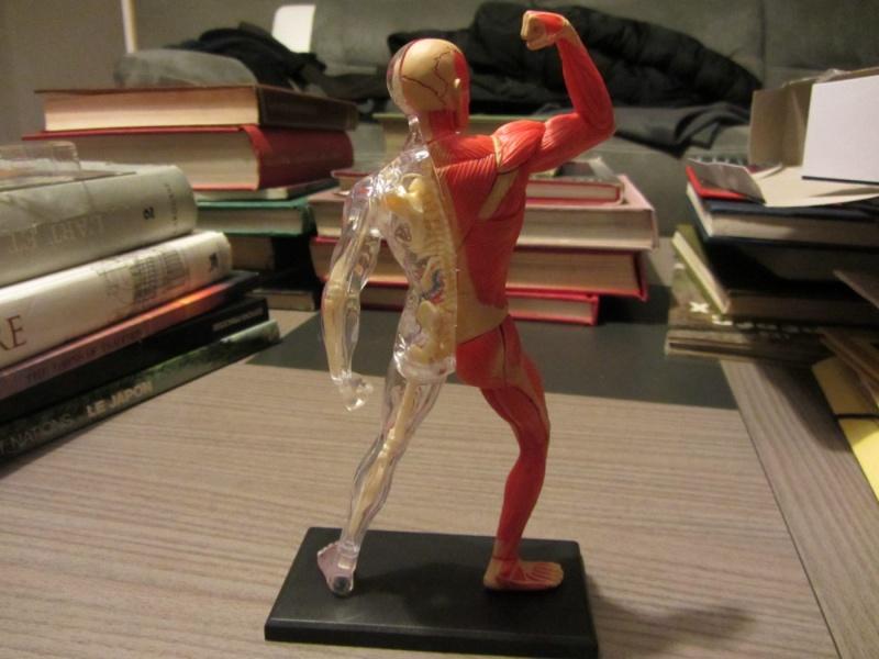 Figurines de référence Img_0715