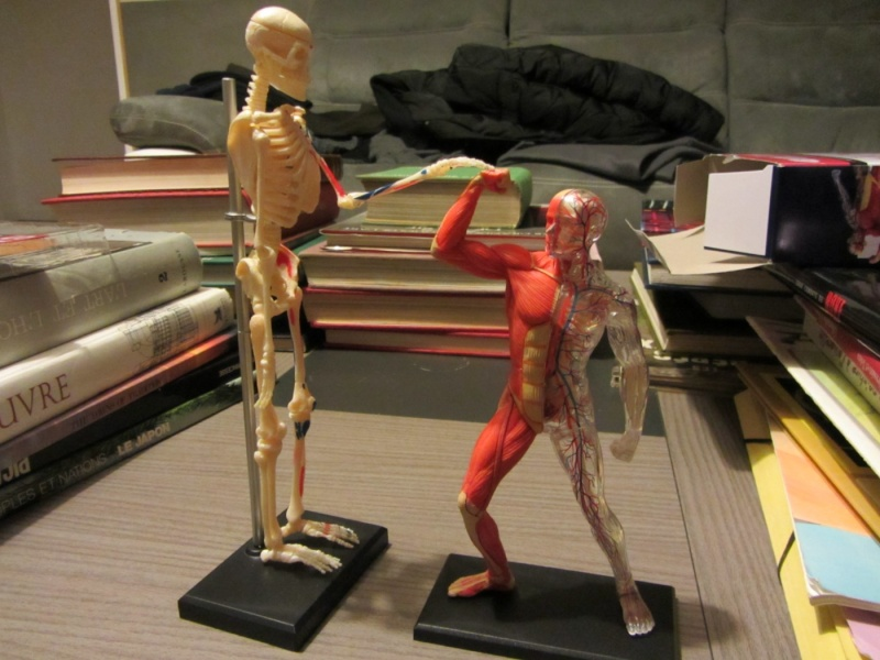Figurines de référence Img_0716