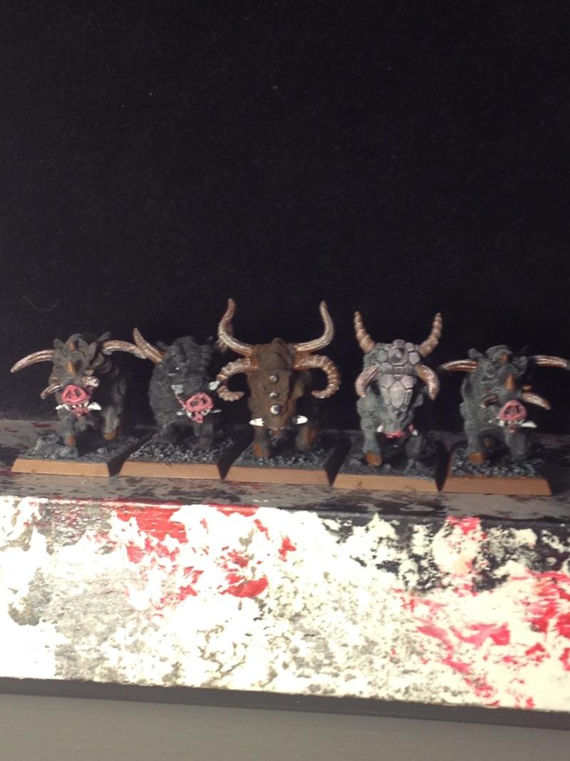 The Beastmen of Savannaheim Img_0422