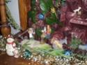 Noël, Noël Pc230111