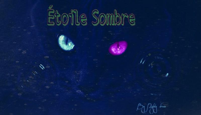Sombry, viens ici !! Image24