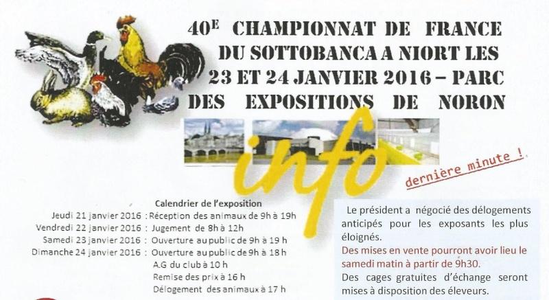 40ème CHAMPIONNAT DE FRANCE 2015 Sans_t24
