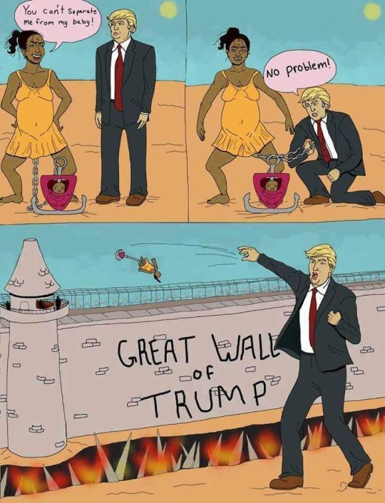 The Wall 14447810