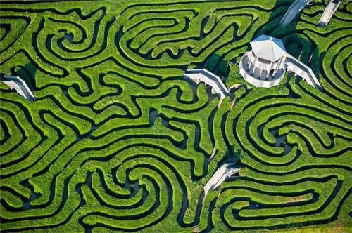 Labyrinth Oie_2313