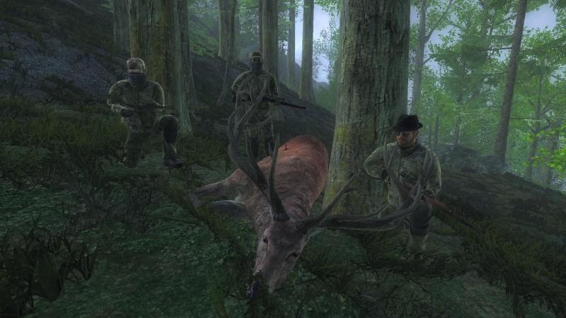 Fotografie in multiplayer con i Nostri AMICI - Pagina 12 Cervo10