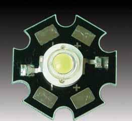 Paludarium 200x50x60 High-p10