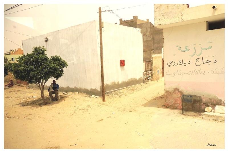 Le désert insolite. Dscn2016