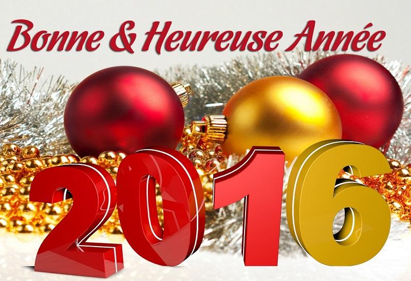 bonne année à tous Ba_20112