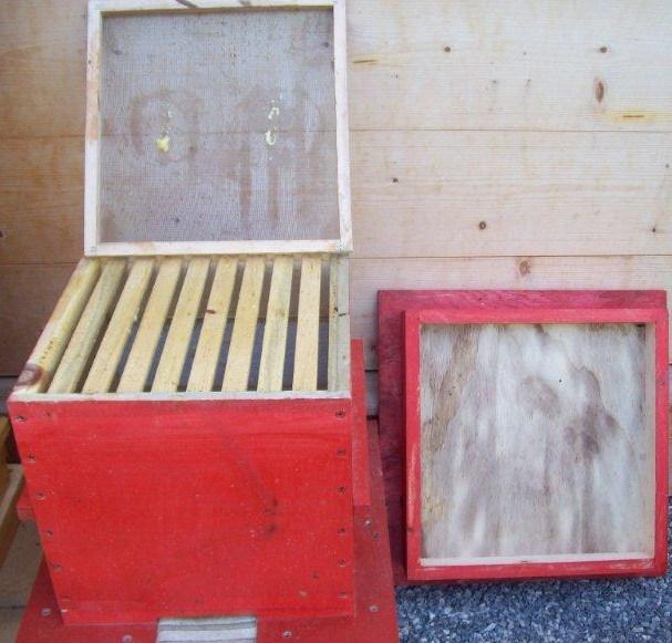 Ruche écologique et barrettes: Lutte VARROAS 100_5512