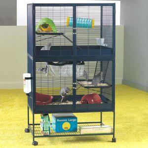 besoin d'aide pour choisir entre deux cages. 26253_11