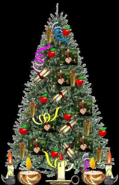 La celebrazione per il Santo Natale Abete410
