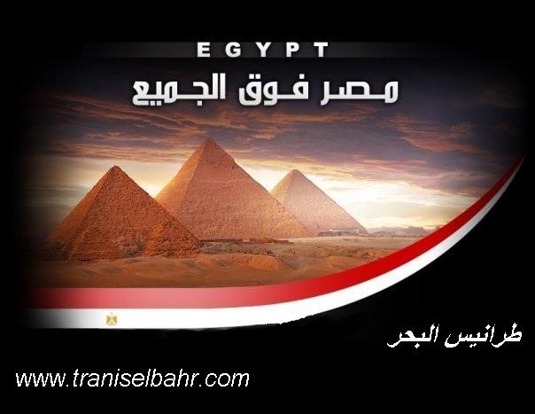 www.traniselbahr.com