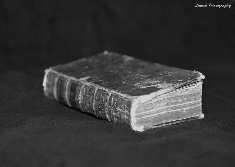 livre ancien Chat_210