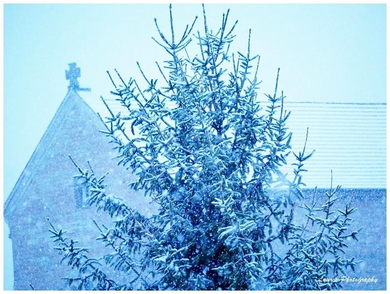 il neige Neige_12