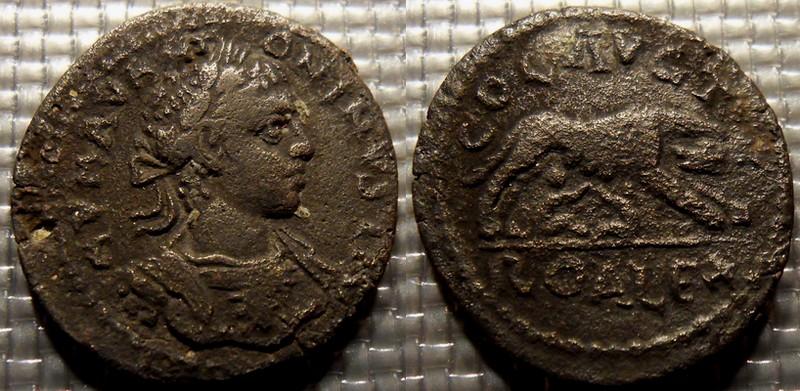 autres monnaies - Page 5 Elag_t10