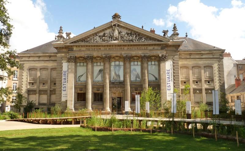 LE MUSÉUM D'HISTOIRE NATURELLE Museum10