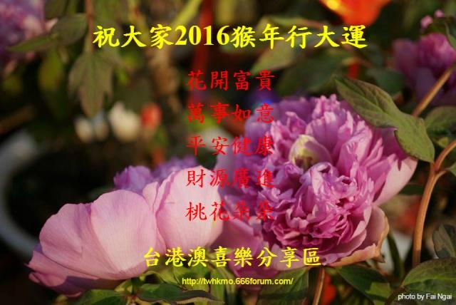 【節日慶典】2016CNY農曆新年猴年行大運!! 12654110