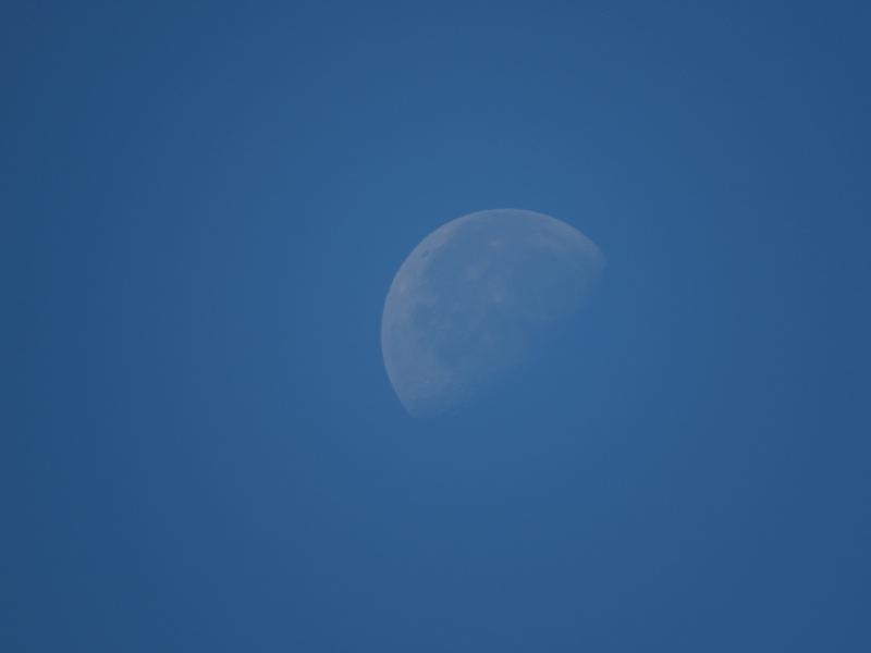 Transparent/Translucent Moon 80611010