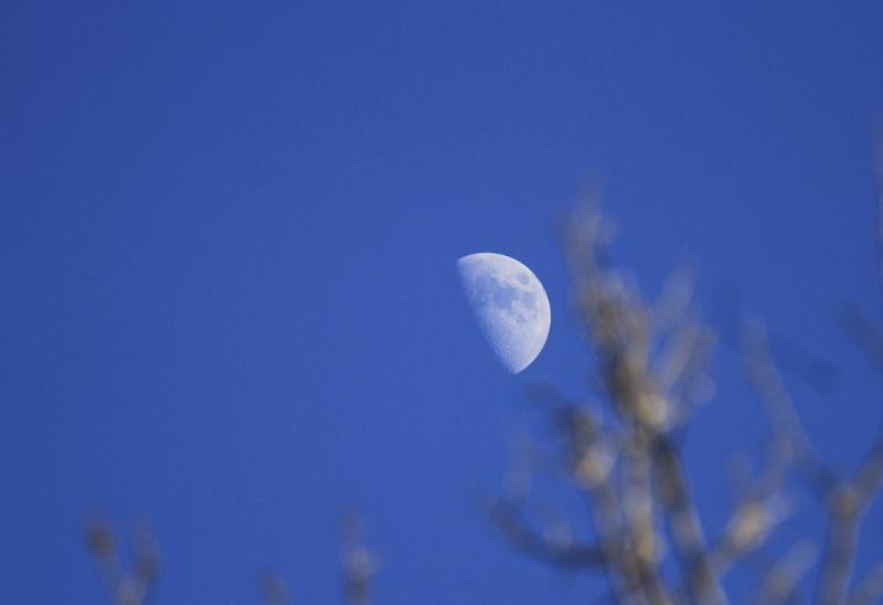 Transparent/Translucent Moon Aftern11