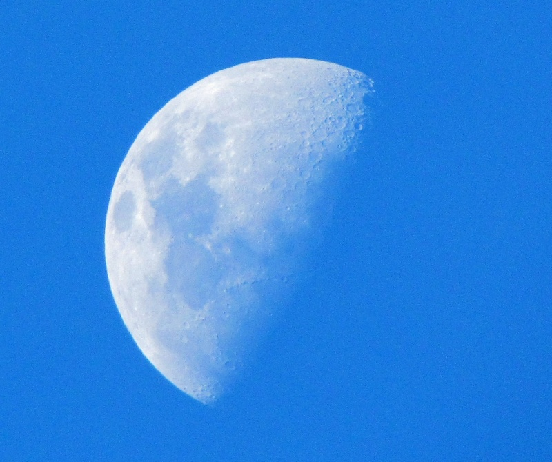 Transparent/Translucent Moon Bestmo10