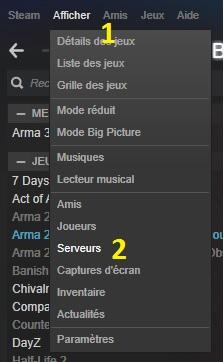 Rejoindre directement un serveur depuis Steam Serveu11