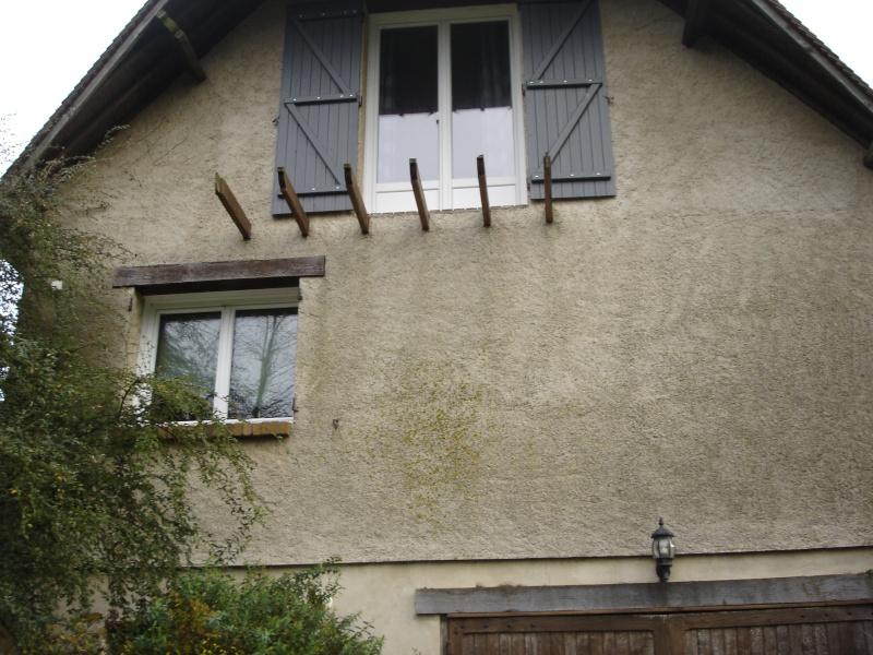 Balcon avec escalier de meunier Dsc02810