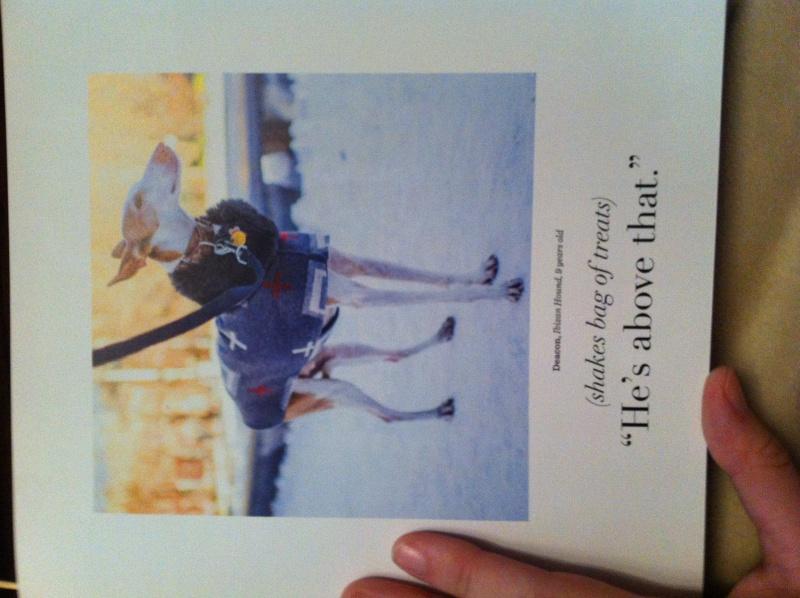 Livre The dogist Img_6120