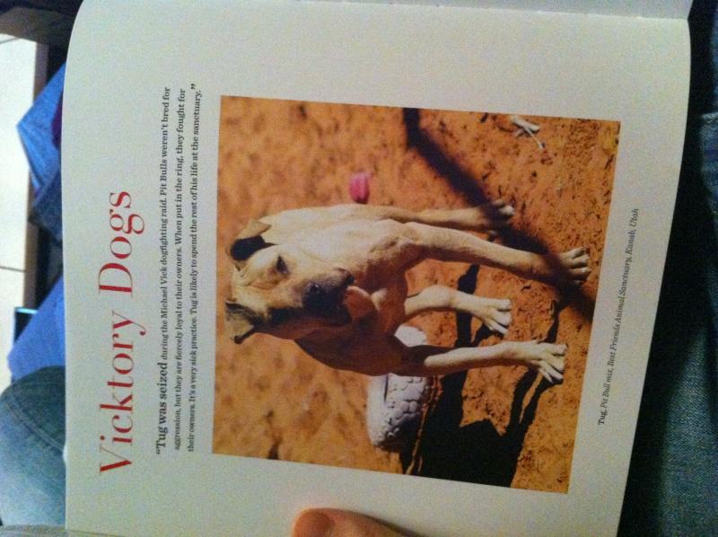 Livre The dogist Img_6130