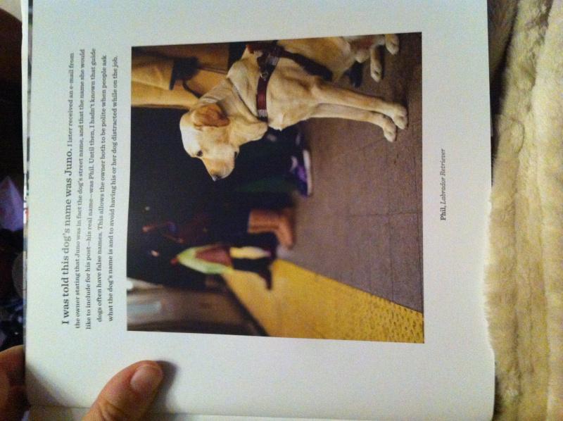 Livre The dogist Img_6132