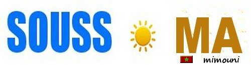 Souss - Faux Souss.com n'est pas en turbulence mais en Agonie lente Logo_s10
