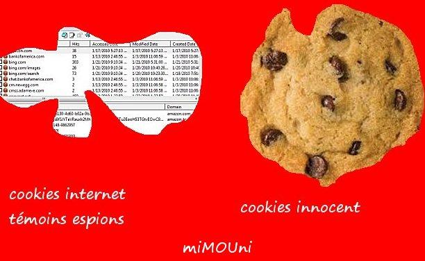 Souss - souss com cookies mène la guerre contre les cookies Cookie10
