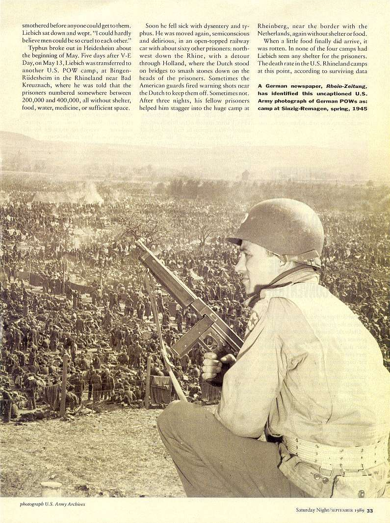 Hellstorm: Exposing The Real Genocide Of Hitler's Germany   Page3311