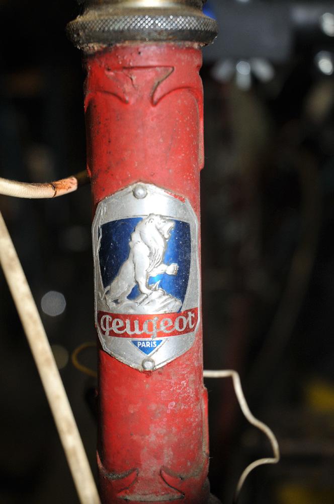 Peugeot course inconnu 1949 ou 1950 Dsc_2921