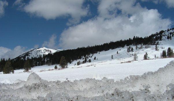 Plains Region Snowy_10