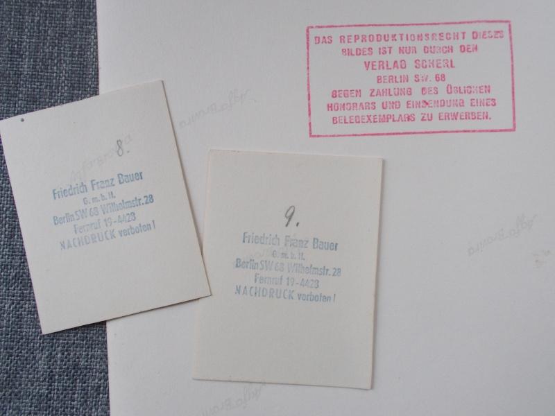 Quelques photos pour le plaisir: SS et autres Dscn0228