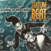 Pochettes de cd CULTURE BEAT Cb_210