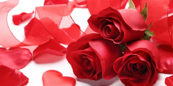 prochaine st valentin Fonds-11