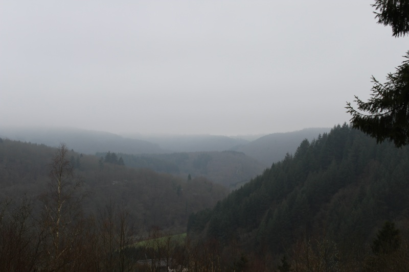 Bouillon un samedi matin nuageux  Img_0411