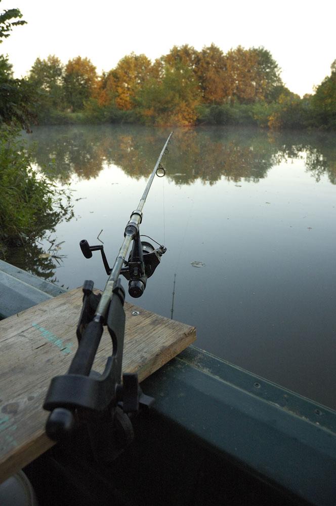 Campagne en petite rivière sauvage. _dsc6812