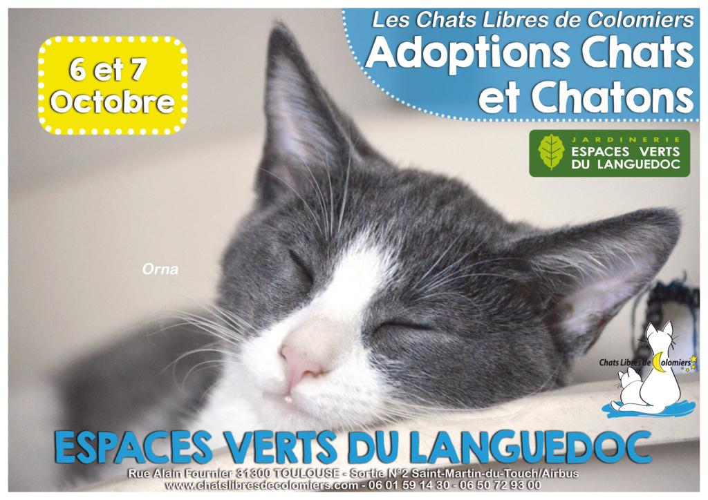 Week-end adoptions 6 et 7 Octobre aux Espaces Verts du Languedoc 2018-111