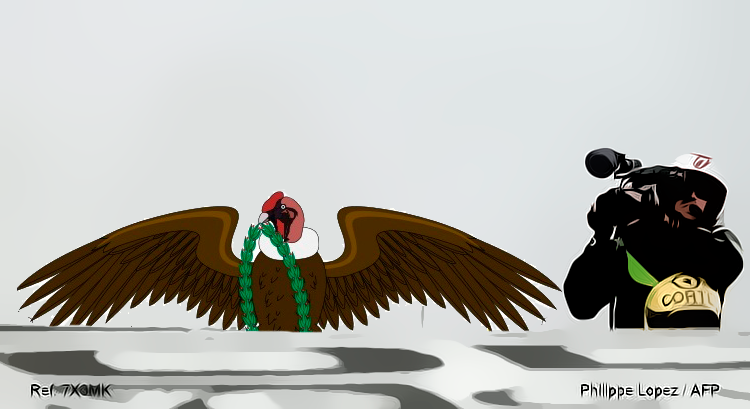"""""""Pedaleo"""" y otras imágenes... - Página 10 Condor10"""