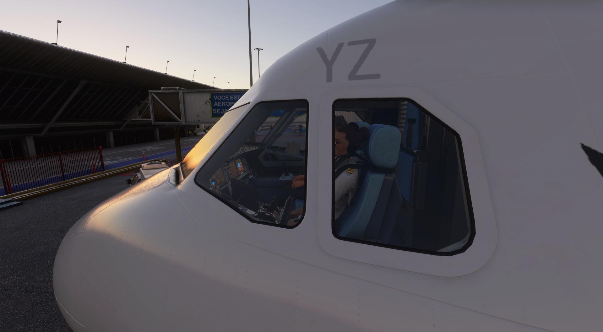 Uma imagem (MSFS 2020) - Página 20 Flight11