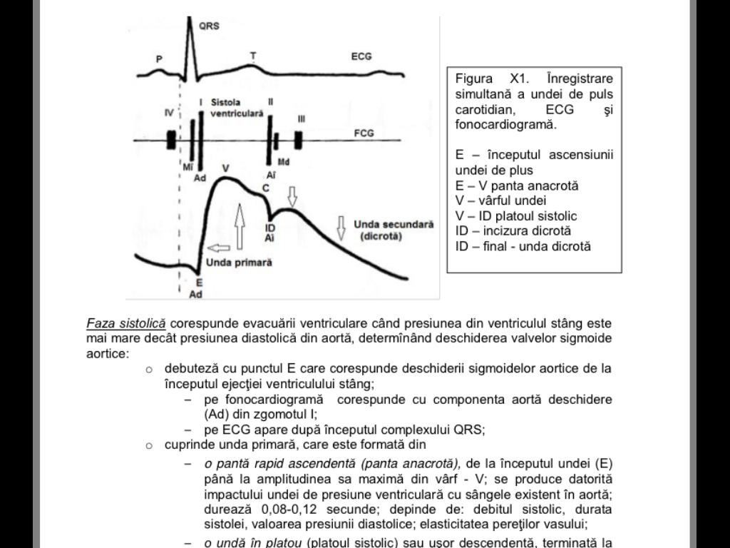 Curba de creştere a sistemelor vii - Pagina 2 Image17