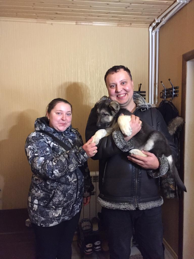 ВОСТОЧНО-ЕВРОПЕЙСКАЯ ОВЧАРКА СИМОН (РКФ) - Страница 2 Img-2016