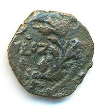 Prutah (Leptón) de Poncio Pilato. Jerusalén L IZ año 17 de Tiberio (30 - 31 d. C.)  Pilato11