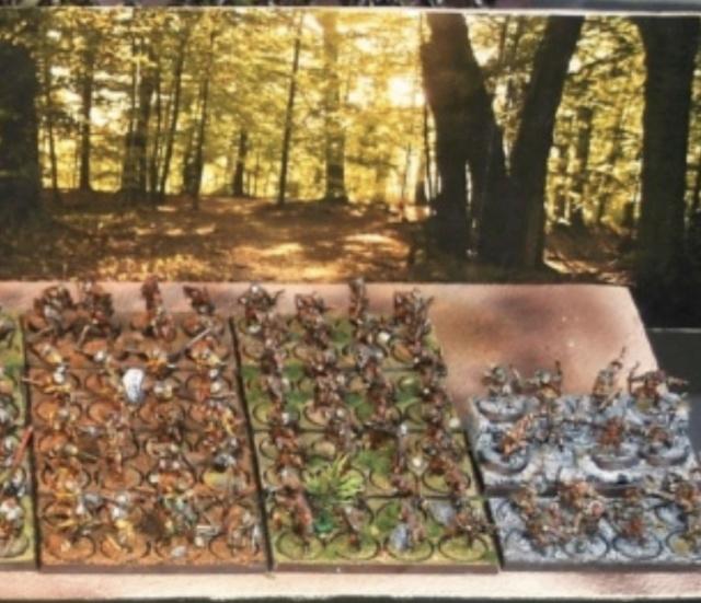 Sauron et ses 10 Armées - L' Armée de L'Immortel - Page 6 61abff10