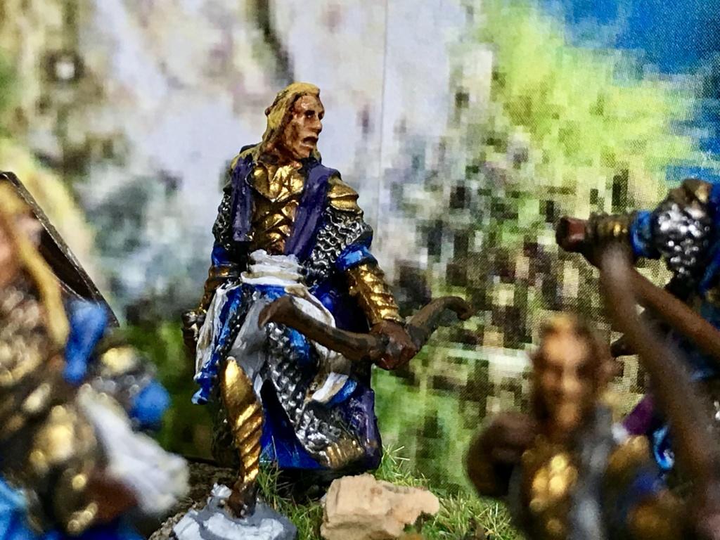 Aragorn et les 5 Armées - Armée de Mirkwood Update - Page 3 639c5c10