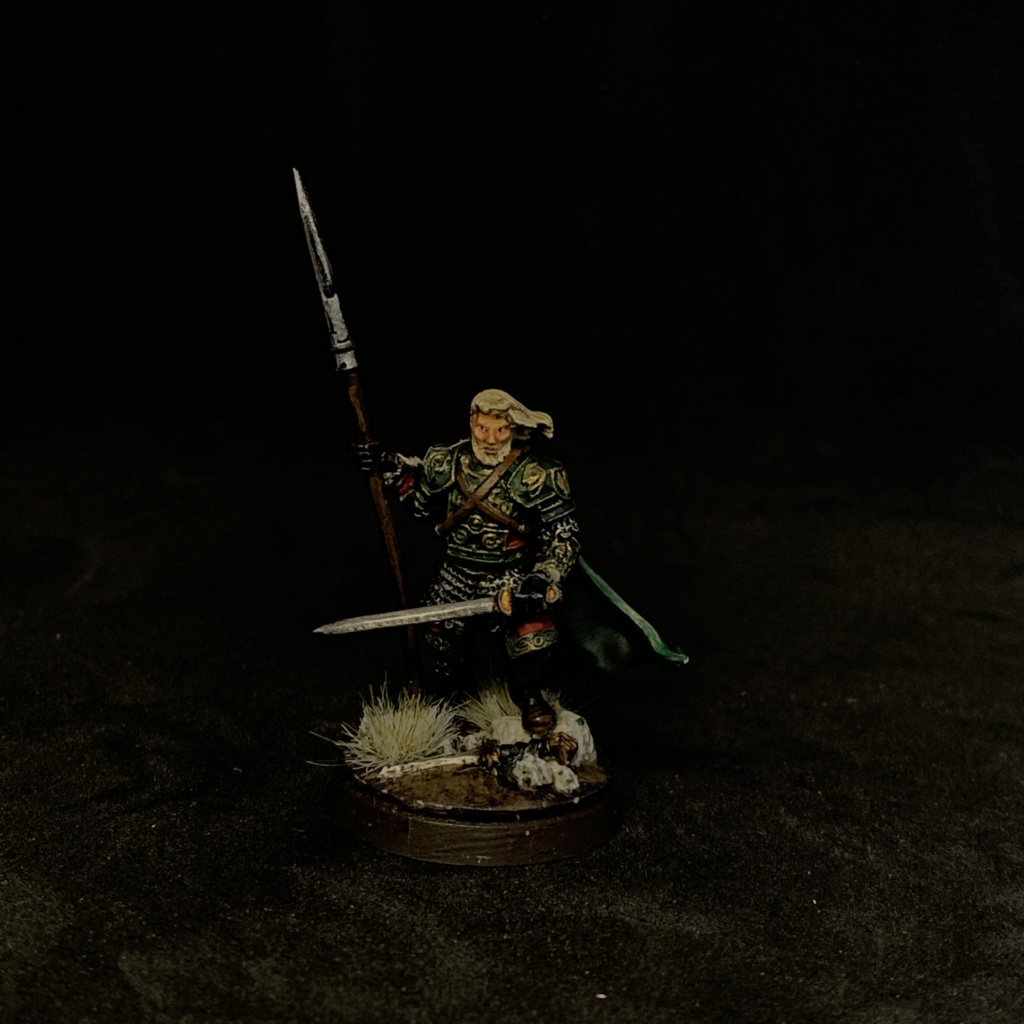 Aragorn et les 5 Armées - Rohan - Page 4 6cf25410