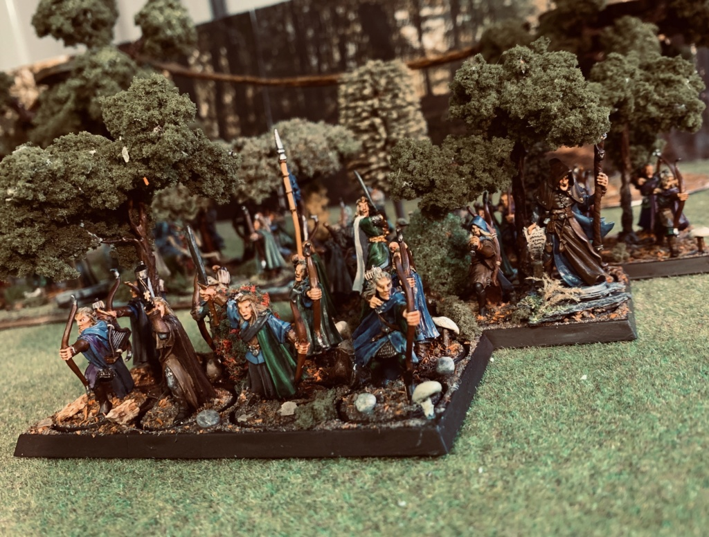 Aragorn et les 5 Armées - Rohan - Page 4 D6487210